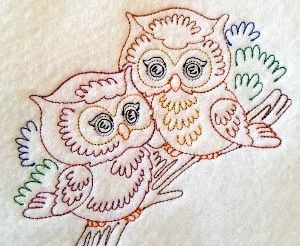 colorlineowls_010_4x4